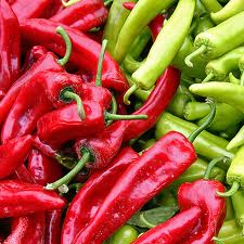 Chili, Chili Pepper, Chilis, Chili Sauce, Hot Sauce, Pepper Sauce, Chilies, Premium Pepper Sauce, Artisan Pepper Sauce, Love Chilis, JAB JAB 1492,